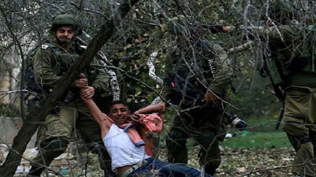 Israel arrests 12 Palestinians in West Bank